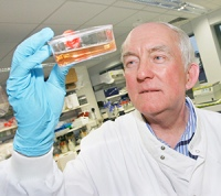 Professor Bob Rees