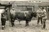 Memories of Brackenhurst photo gallery